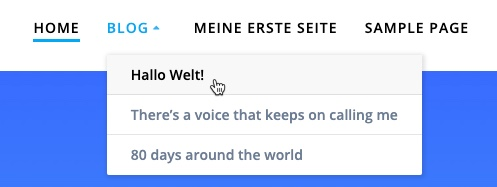 WordPress-Menü Im Live-Frontend
