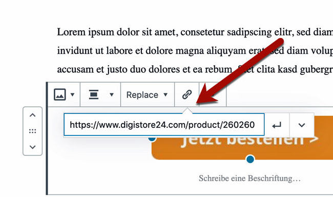 Digistore24-Bestelllink in WordPress einfügen